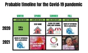 Probable timeline for the covid-19 pandemic